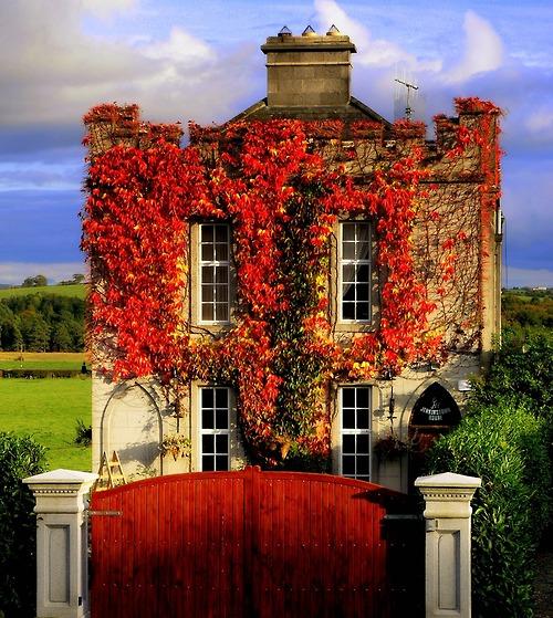Autumn in Devonshire, England photo via sensuellee