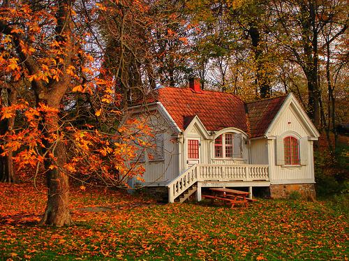 Autumn, Sweden photo via favim