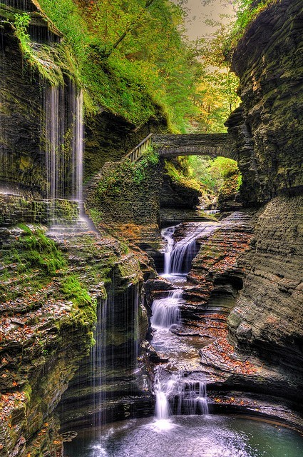 Watkins Glen State Park, New York  photo via julie